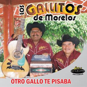Los Gallitos de Morelos 歌手頭像