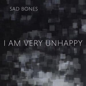 Sad Bones 歌手頭像