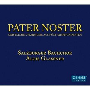 Alois Glassner 歌手頭像