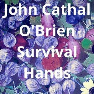 John Cathal O'Brien 歌手頭像
