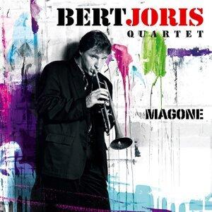 Bert Joris Quartet 歌手頭像