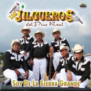 Los Jilgueros del Pico Real 歌手頭像