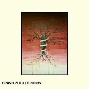 Bravo Zulu 歌手頭像