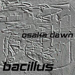 Bacillus 歌手頭像