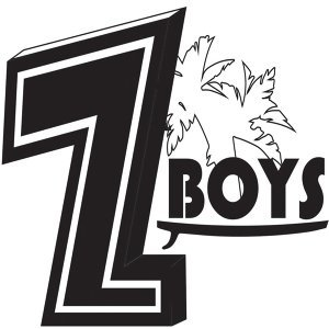 The Z-Boys 歌手頭像
