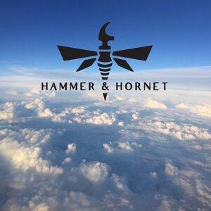 Hammer & Hornet 歌手頭像