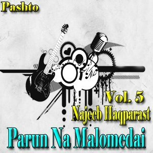Najeeb Haqparast 歌手頭像