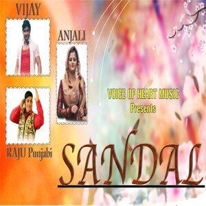 Raju Punjabi, Anjali, Vijay 歌手頭像