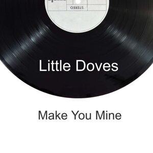 Little Doves 歌手頭像