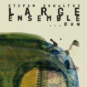 Stefan Schultze Large Ensemble 歌手頭像