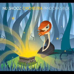 Nu Shooz Orchestra 歌手頭像