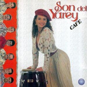 Café 歌手頭像