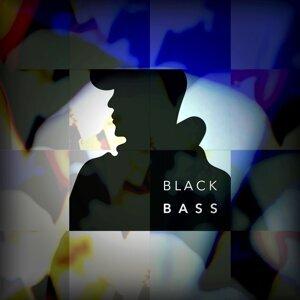 BLACK BASS (BLACK BASS) 歌手頭像