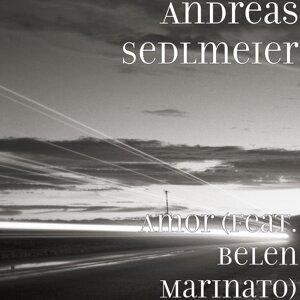 Andreas Sedlmeier 歌手頭像