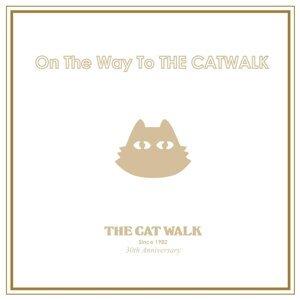 THE CATWALK 30th Anniversary Special Band feat. Hirotaka Izumi 歌手頭像