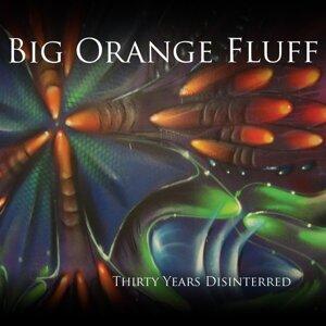 Big Orange Fluff 歌手頭像