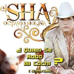 El Sha 歌手頭像