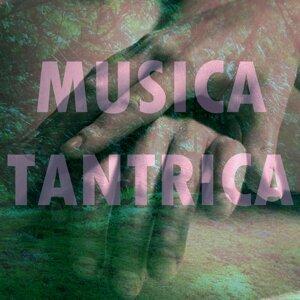 Musica Tantrica 歌手頭像