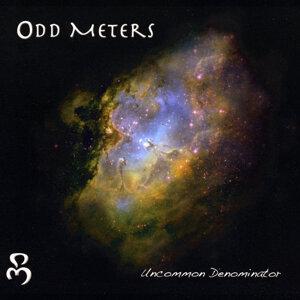 Odd Meters 歌手頭像