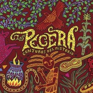 Los Pecera 歌手頭像