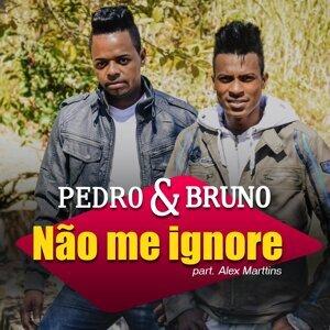 Pedro e Bruno 歌手頭像