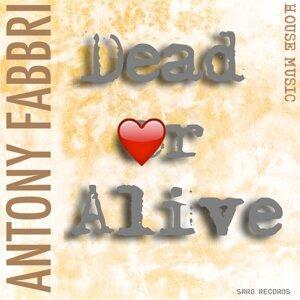 Antony Fabbry 歌手頭像