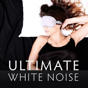 Official White Noise Collection 歌手頭像