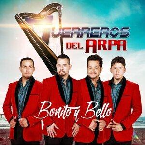 Guerrreros Del Arpa 歌手頭像