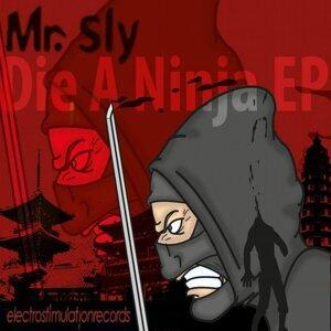 Mr. Sly 歌手頭像