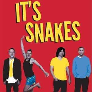 It's Snakes 歌手頭像