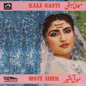 Noor Jehan, Mehnaz 歌手頭像
