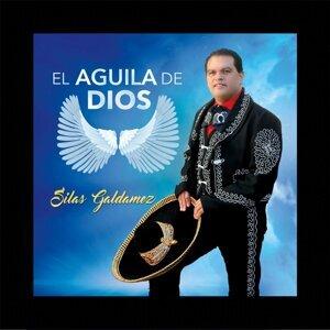 Silas Galdamez 歌手頭像