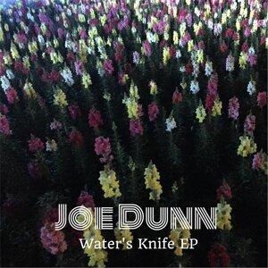 Joe Dunn 歌手頭像