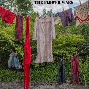The Flower Wars 歌手頭像