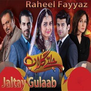 Raheel Fayyaz 歌手頭像