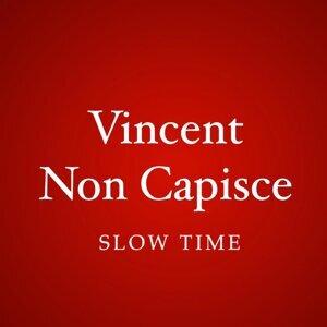 Vincent non capisce 歌手頭像