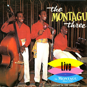 The Montagu Three 歌手頭像