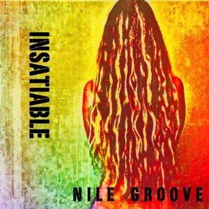 Nile Groove 歌手頭像