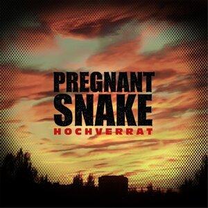 Pregnant Snake 歌手頭像