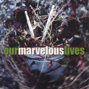 Our Marvelous Lives 歌手頭像