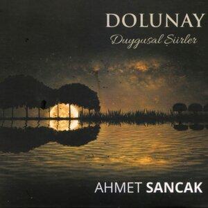 Ahmet Sancak 歌手頭像