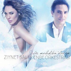 Ziynet Sali, Enbe Orkestrası 歌手頭像
