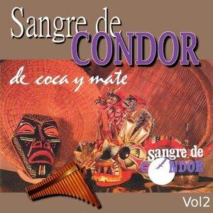 Sangre de Condor 歌手頭像