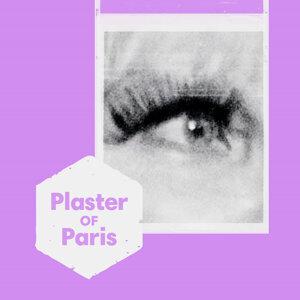 Plaster of Paris 歌手頭像