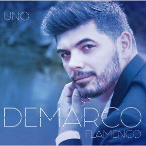 Demarco Flamenco 歌手頭像