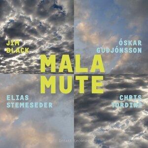 Jim Black Malamute with Elias Stemeseder, Chris Tordini, Óskar Guðjónsson & Jim Black 歌手頭像