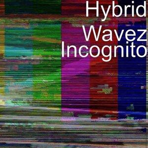 Hybrid Wavez 歌手頭像