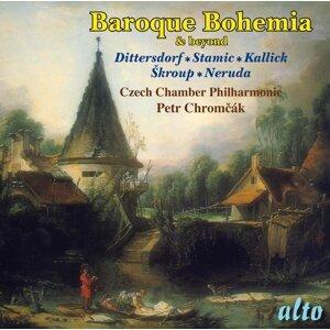 Czech Chamber Philharmonic & Petr Chrom?ák 歌手頭像