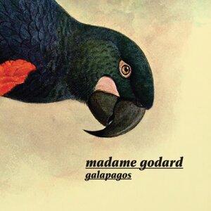 Madame Godard 歌手頭像