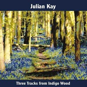 Julian Kay 歌手頭像